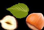 орехи-семечки (4).png