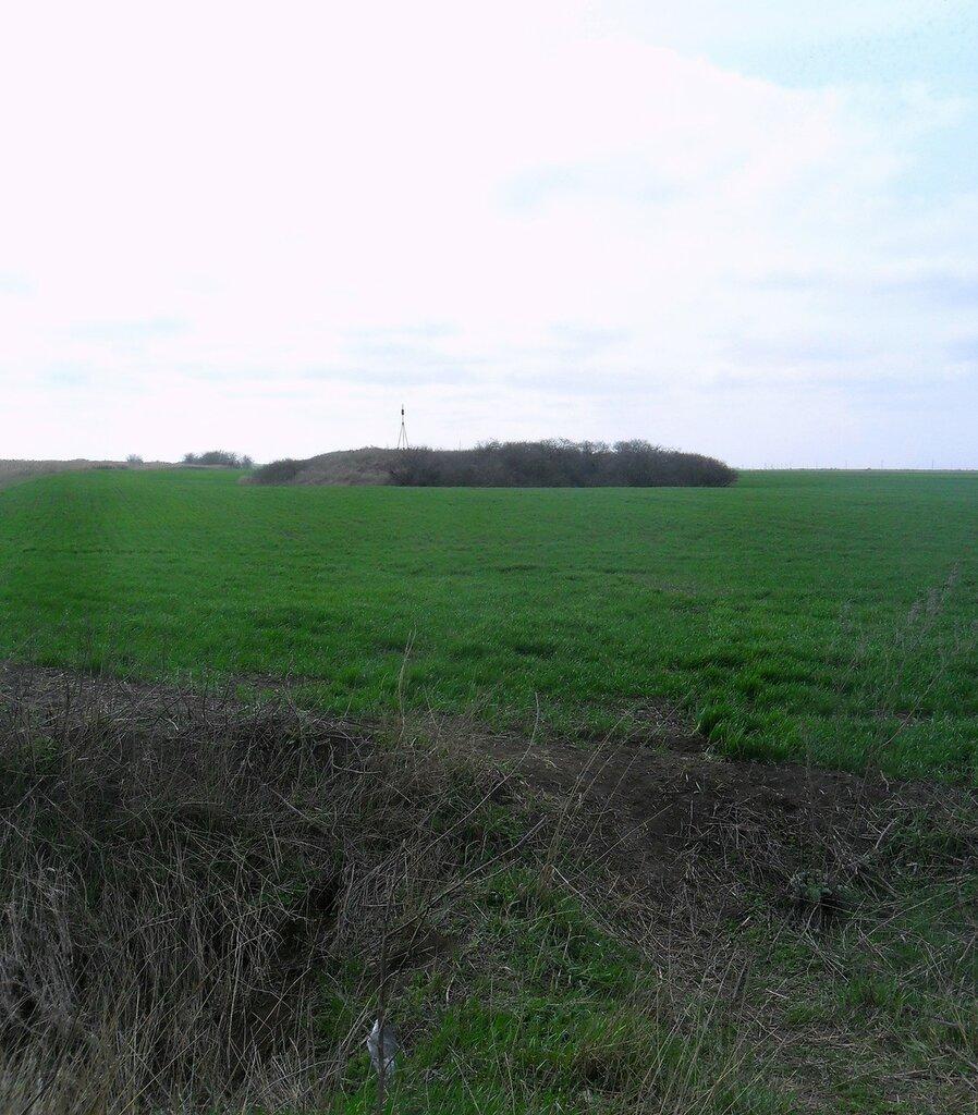 В поле зелёном серый курган ... SAM_5891.JPG