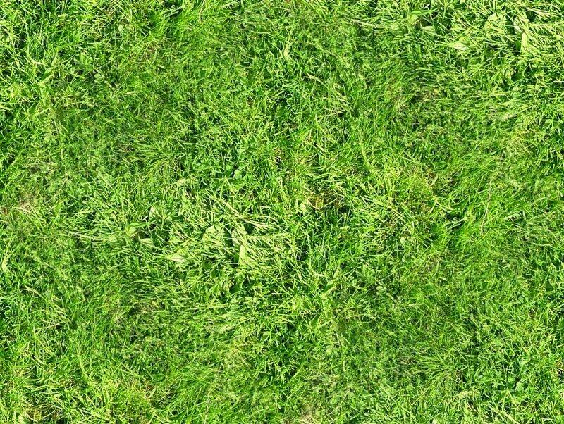 бесшовный, зеленая трава