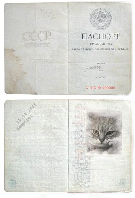 http://img-fotki.yandex.ru/get/4214/klayly.15/0_39cd3_d9528ae5_XL.jpg