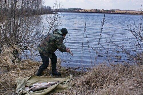 Благородный рыбак.