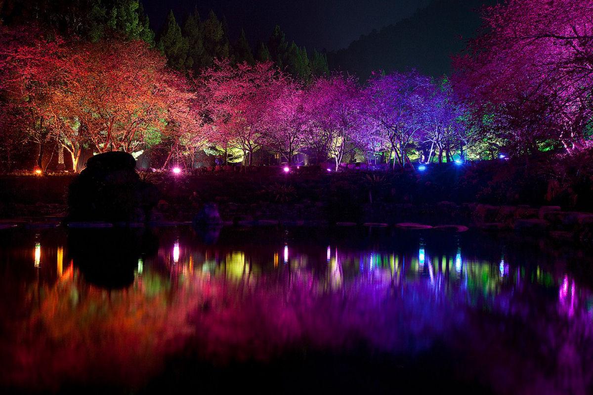 Праздник цветения сакуры на Тайване. Прекрасная деревня Формосан 0 1607a5 f1e6cbae orig