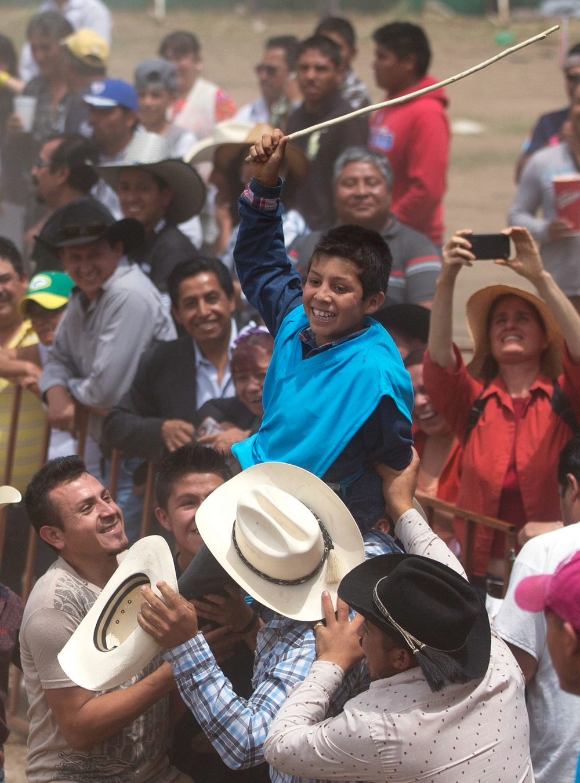 Фестиваль ослов в Мексике