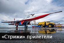 Стрижи в Барнауле 2015 - подробный фоторепортаж