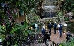 Водопад в тропиках