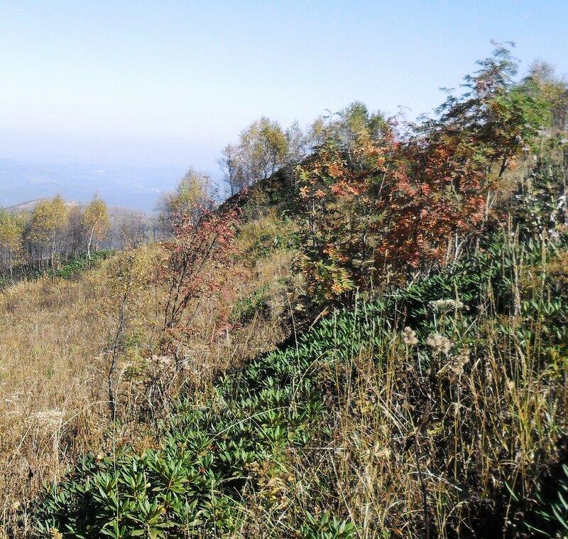 В горах, краски Осени... SAM_3343 - 1.JPG