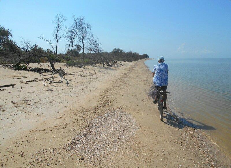 Велотропка у воды морской ... DSCN8200.JPG