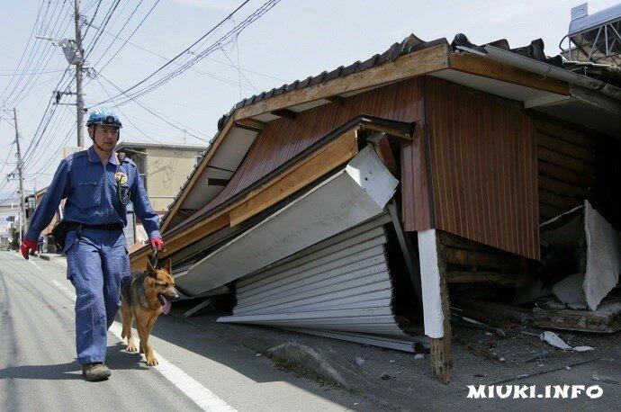 Серия землетрясений в Японии, апрель 2016