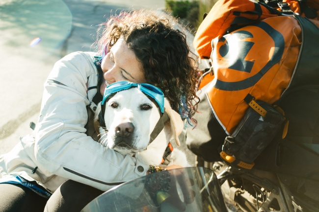 Мэлори Пэйдж путешествует поАляске намотоцикле сосвоим лучшим другом— псом покличке Бейлор