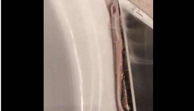 ВСША начали взрываться iPhone 7: появилось видео