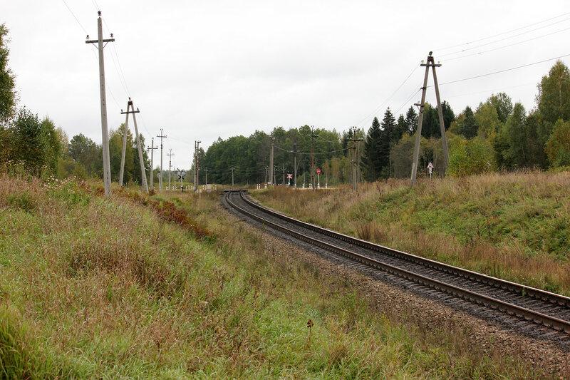 Переезд и платформа 354 км Рижского направления