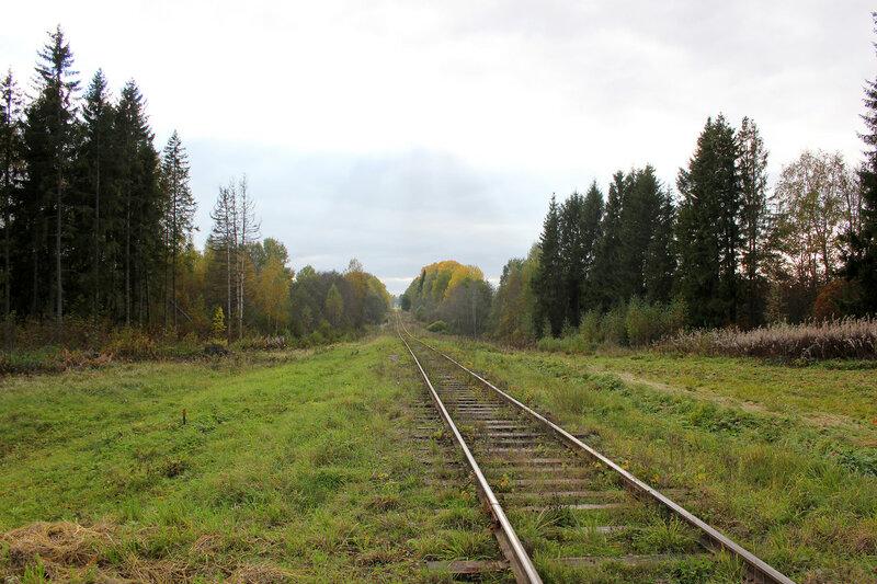 Неизвестный переезд на перегоне Весьегонск - Овинище-2