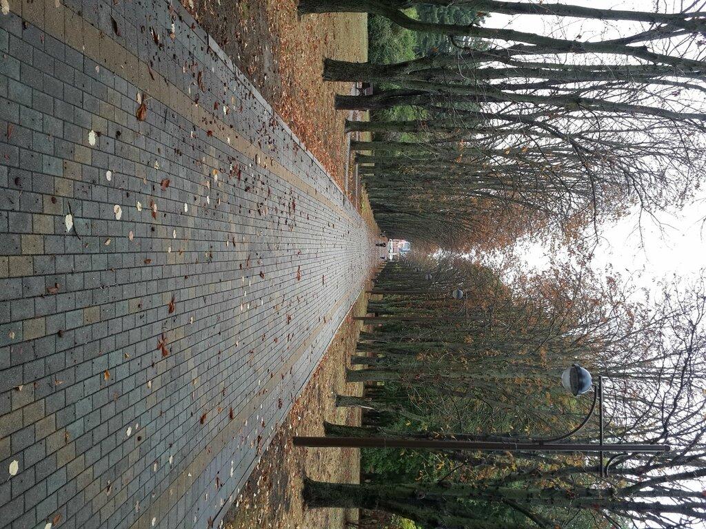Пешие и велопрогулки по Краснодару - ищу компаньонов - Страница 7 0_82a3b_25b09e81_XXL