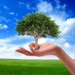 Всемирный день окружающей среды!