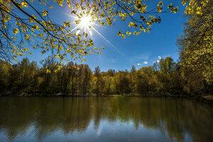 В солнечный весенний день...