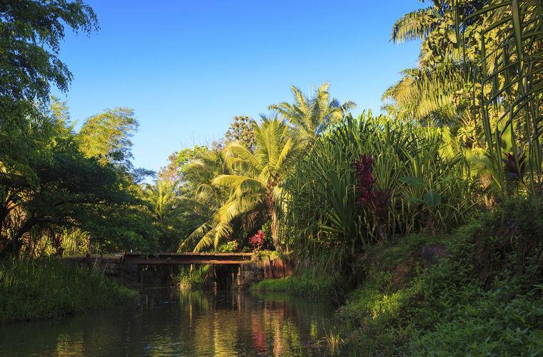 Плавать в неизвестных реках Во-первых, многие реки кишат крокодилами. Казалось бы, сколько можно был