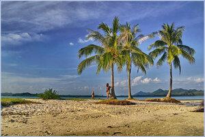 Она и пальма