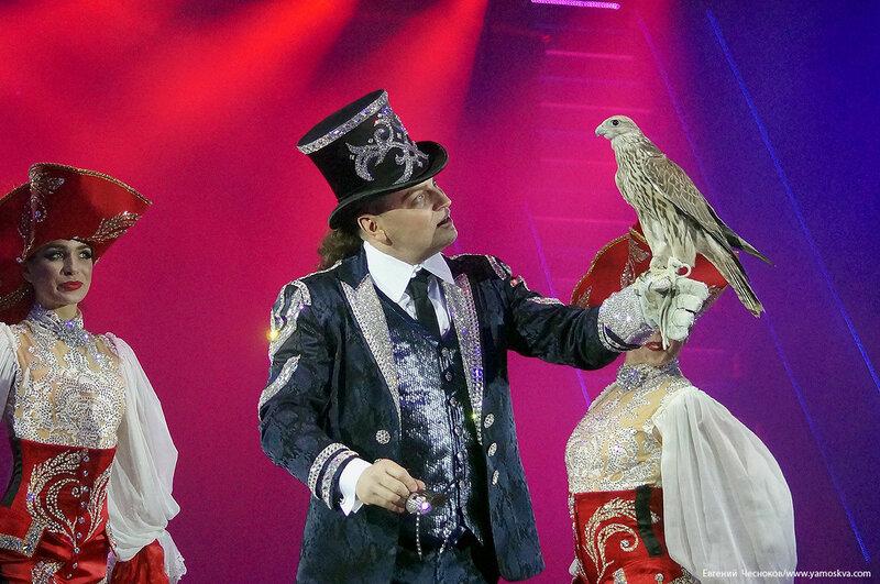 Цирк Никулина. Магия цирка. 21.02.17.60. Сокол..jpg