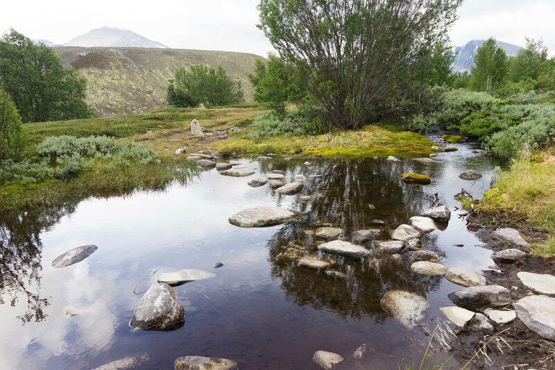 ручей в горах Рондане