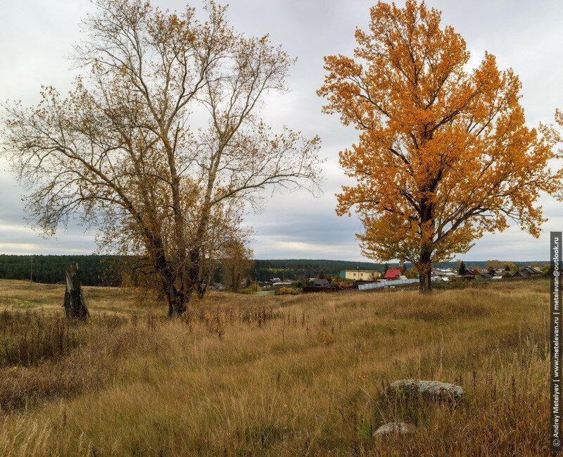 осенний пейзаж возле села Исетское