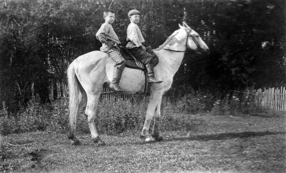 Окрестности Рыбинска. Село Головино. 30 июля 1902 года.