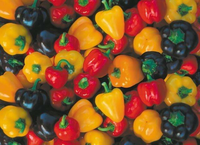 pepper-mini-bell-mixed.jpg