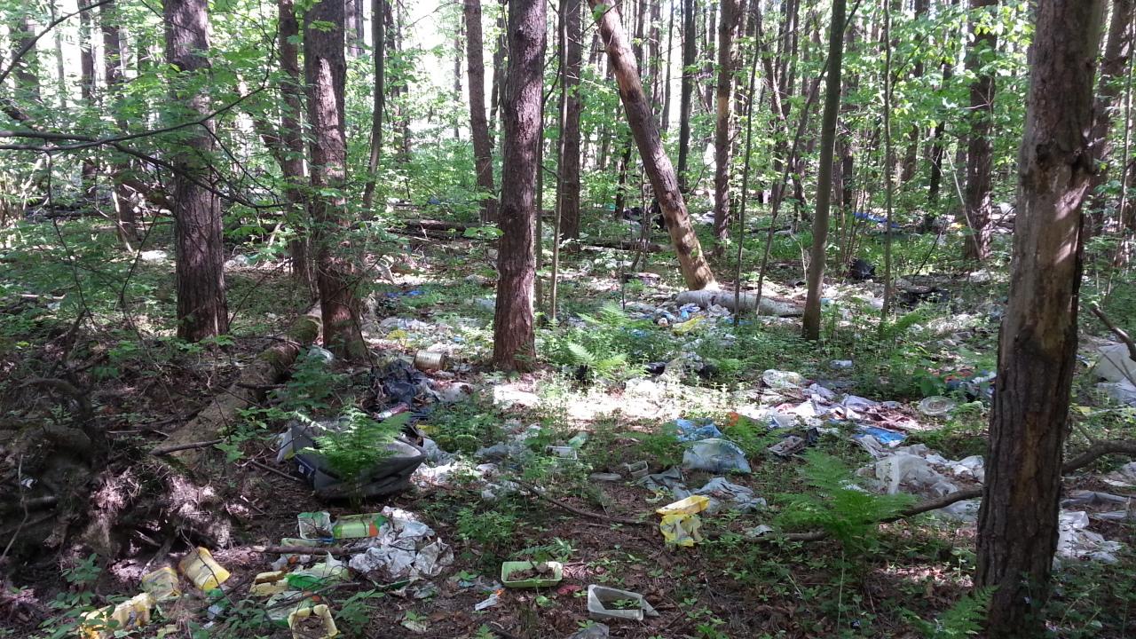 мусор в ООПТ подольский широколиственный лес.jpg