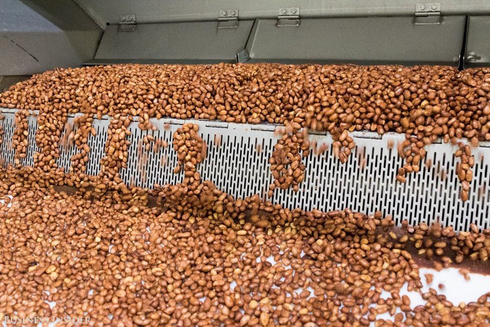 Для M&M's с арахисом орехи, которые привозят в Хакеттстаун в основном с юго-востока США, сначала обж