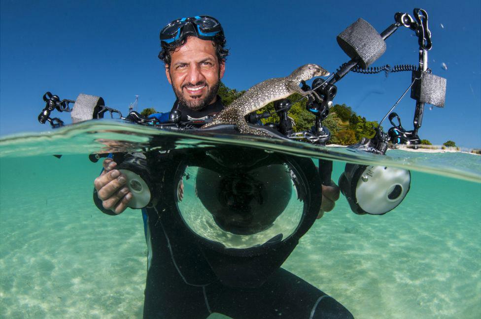 3. «Акулы обычно дают вам понять, что это их место, их территория, и все, что происходит сейчас