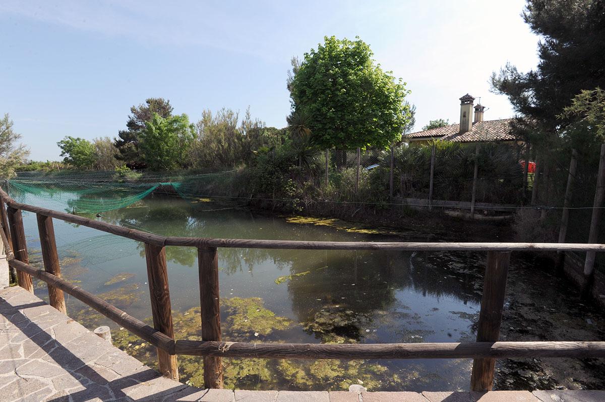 34. На одном из островов лагуны расположен отель, куда вас привезут на лодке и уедут. Кроме постояль