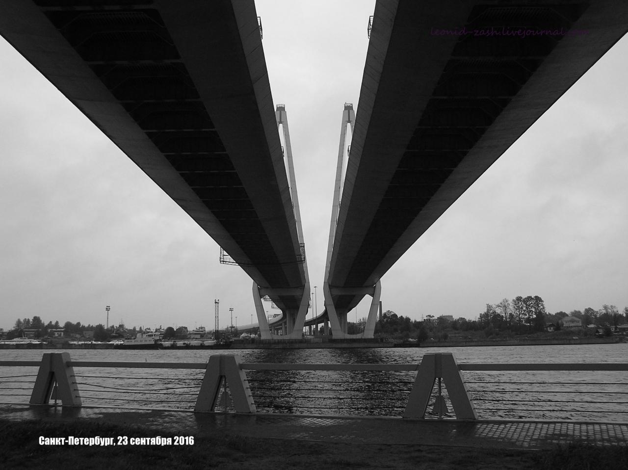 Большой Обуховский мост 05.JPG