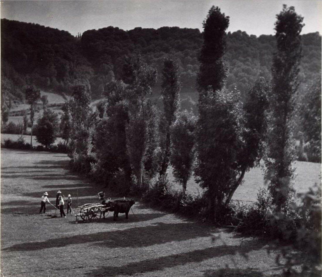 1937. Пейзаж Бурбонниса
