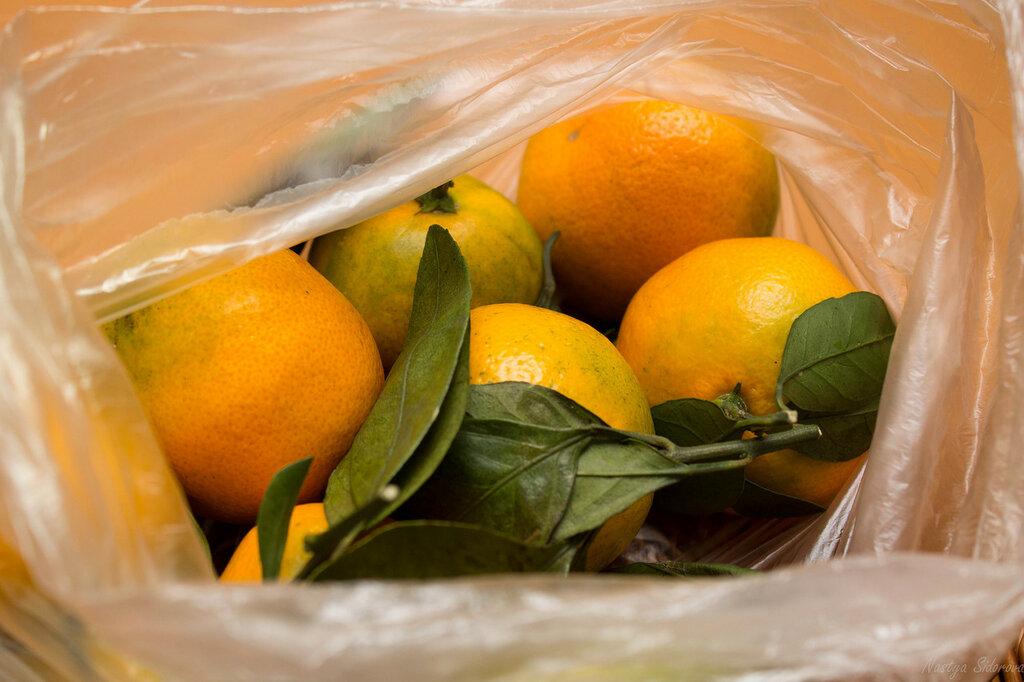 мандарины-1.jpg