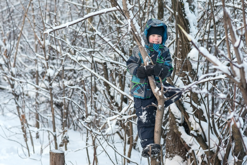 The boy climbs a tree in winter.
