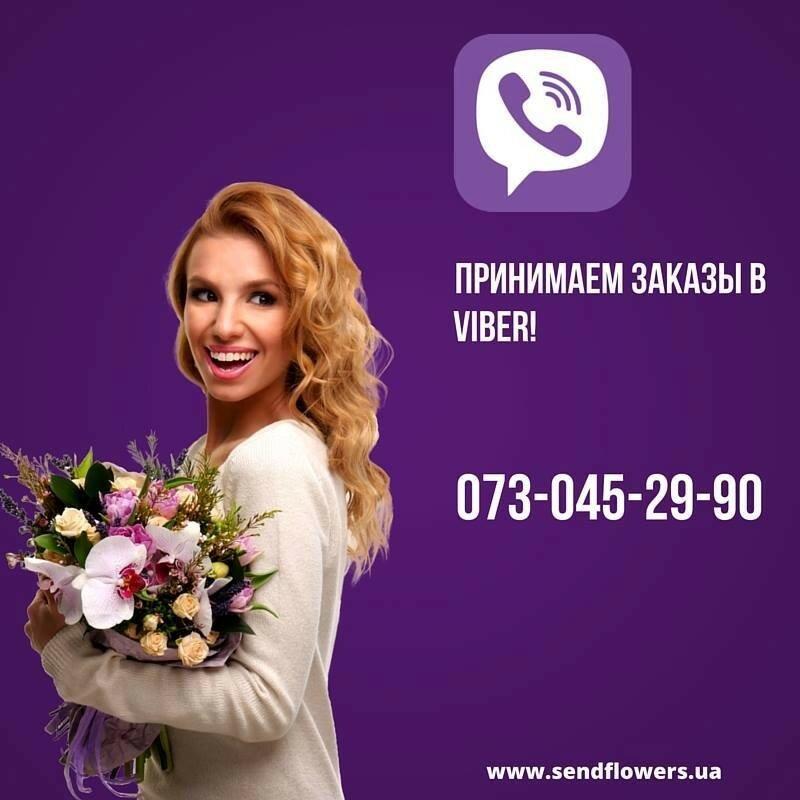 12803984_10208528099777477_781549023_n.jpg