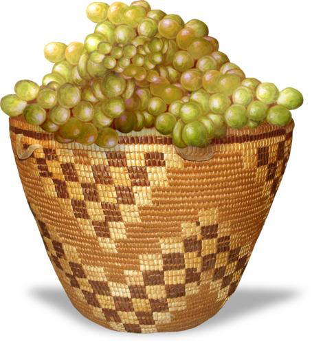 NLD Basket with vines sh.png