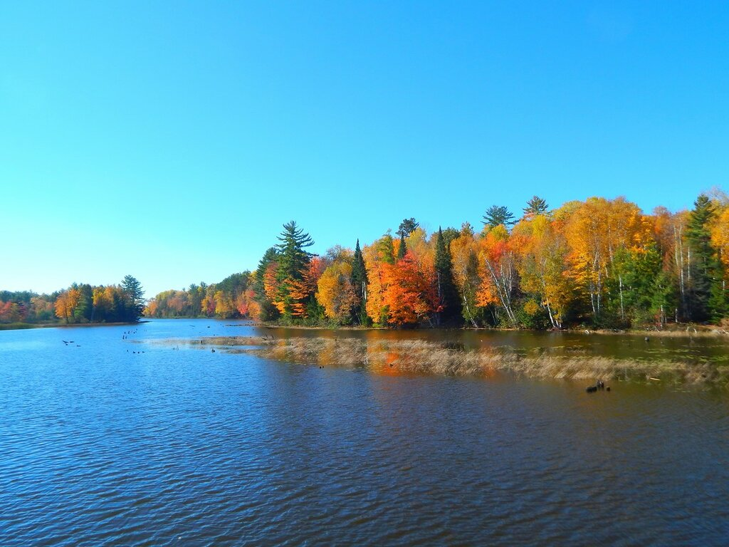 По реке Висконсин.