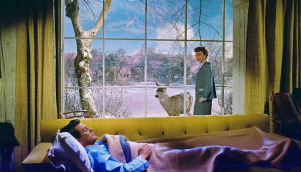 1955 - Все, что дозволено небесам.jpg