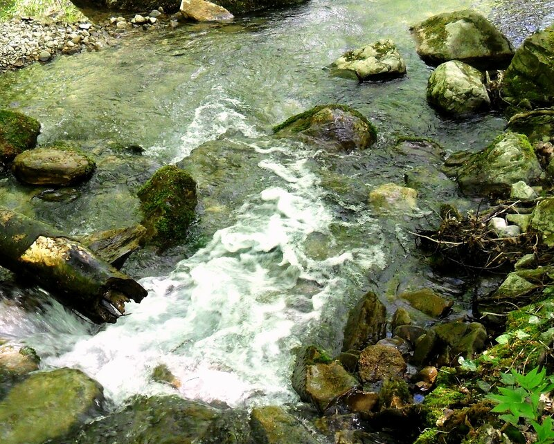 Вода быстрая, апрельская ... SAM_7717.JPG