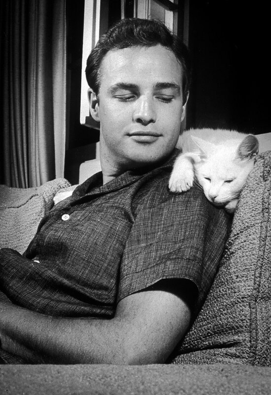 кумиры. Marlon Brando