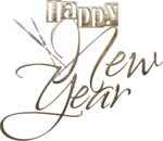 New Year 2016 (124).png