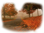 осень  дорога   фон.png