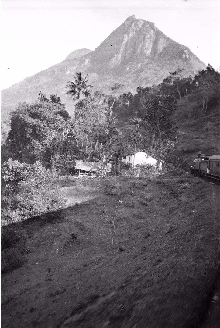 207. Пейзаж в окрестностях Канди