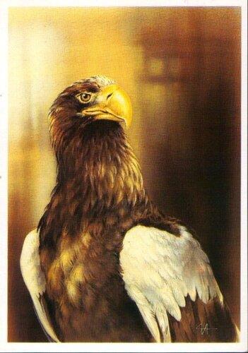The white-arm (Pacific-Ocean) eagle. monument.  Орёл. postal card. памятник.  БР и Младенец на троне... картина...
