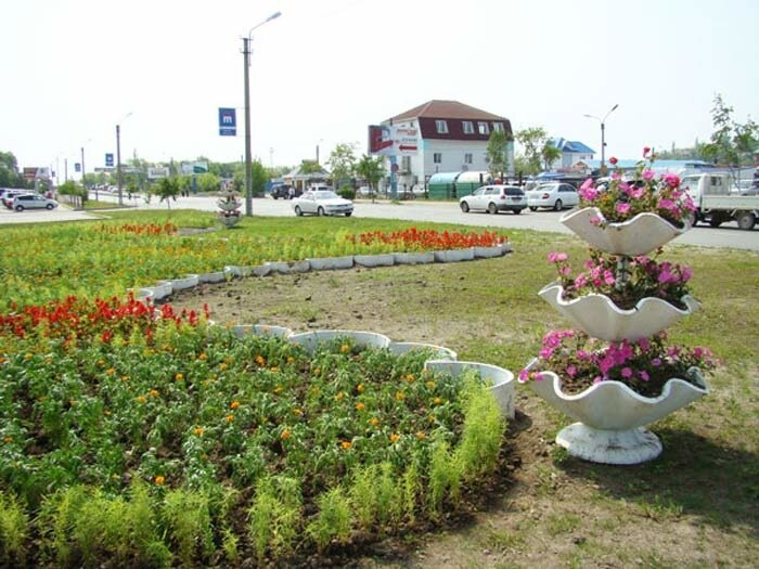 Клумбы,цветы