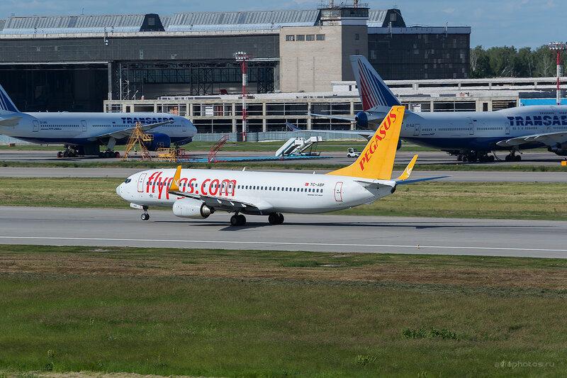 Boeing 737-82R (TC-ABP) Pegasus D808726