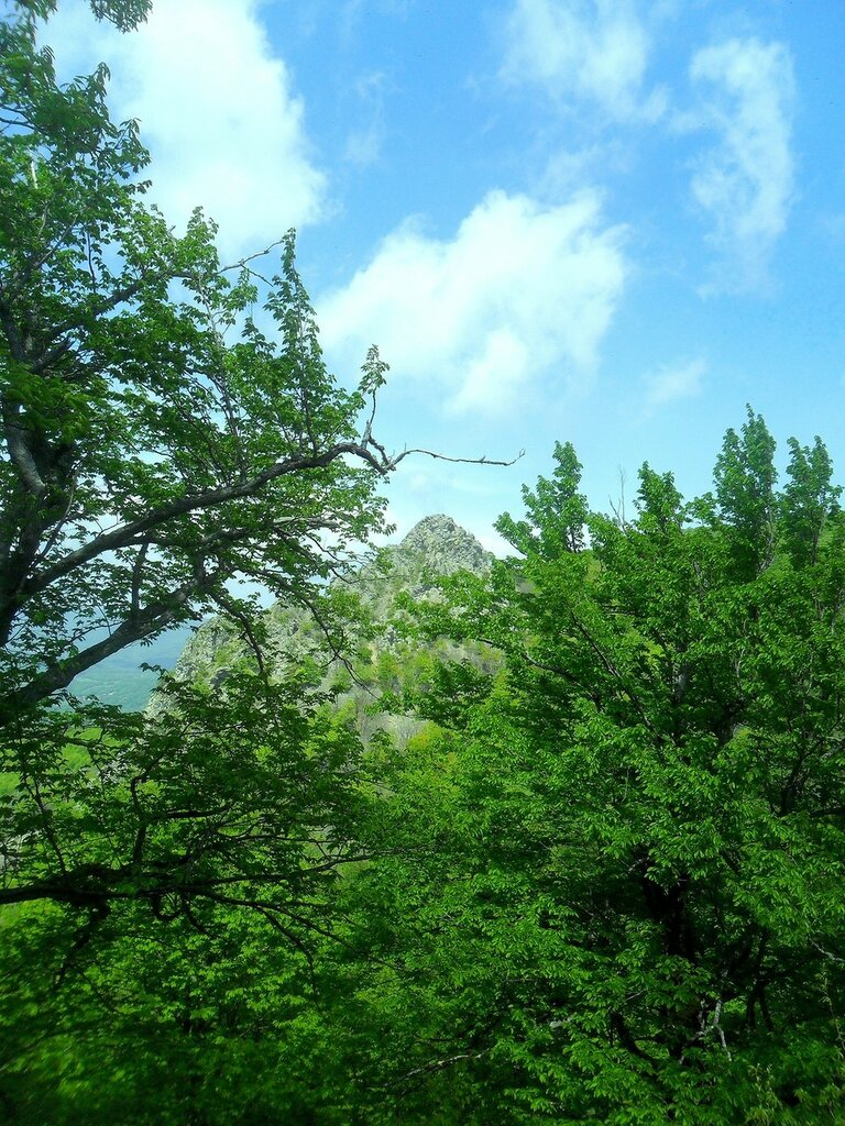 В горах ... SAM_6995.JPG