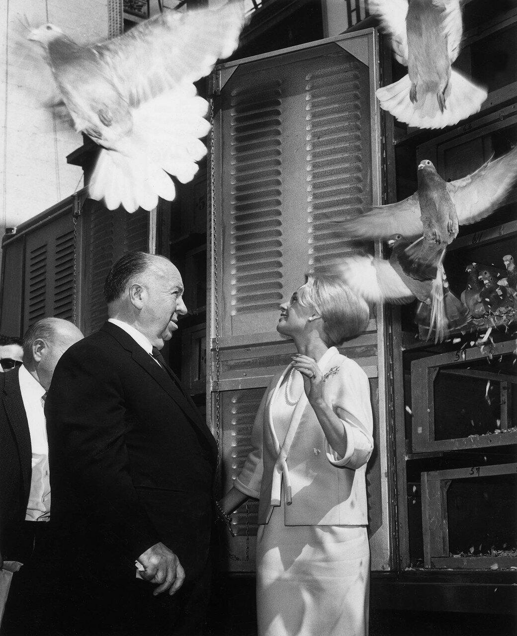 1963. Типпи Хедрен и Альфред Хичкок на съемках «Птиц»