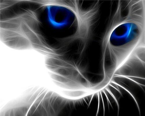 Фанто-кошка