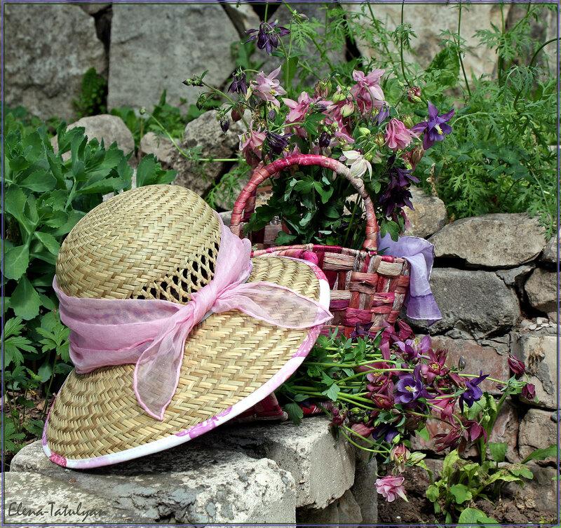 картинки лето шляпа и цветы будет интересно, отпишитесь